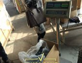 china_inspection_drilling_screw_loadingcontainer10